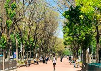 S'estima que al 2050 el 80% de la població viurà a les ciutats (Diputació de Barcelona)